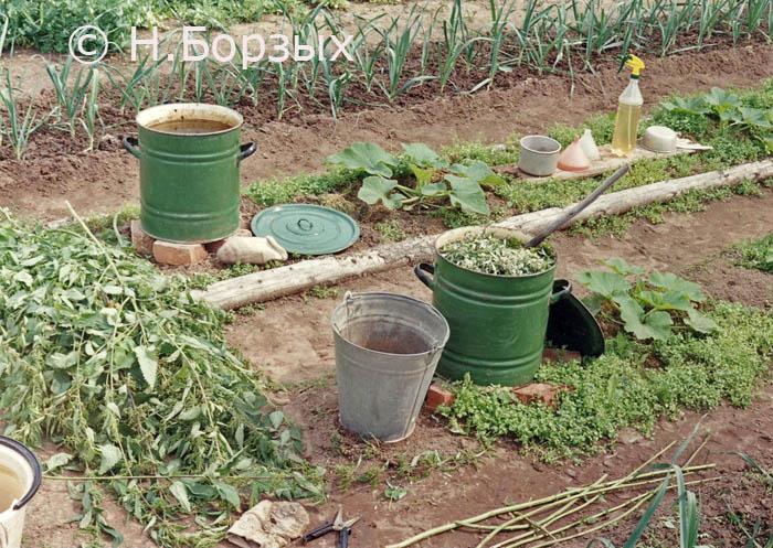Чистый огород